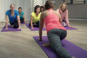 Hatha Yoga Westland